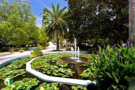 giardino botanico cagliari orto botanico di cagliari aperto il 25 aprile e il 1