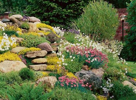Plants For A Rock Garden Rock Garden Design Tips 15 Rocks Garden Landscape Ideas