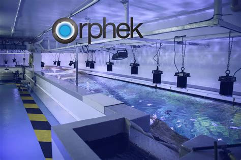 led lighting for aquarium orphek