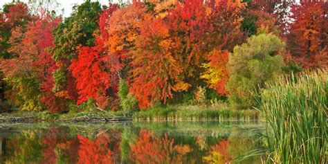 stunning fall scenery northern wisconsin travel wisconsin