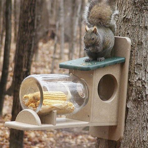 Birds Choice Recycled Jar Squirrel Feeder & Reviews   Wayfair