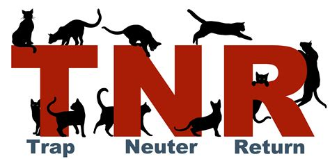 Trap Neuter Return trap neuter return