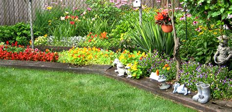 types  plants  choose   small garden