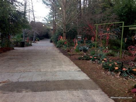 A Fun Day In Columbia Sc With Kids Family Travel Blog Lights At The Zoo Columbia Sc