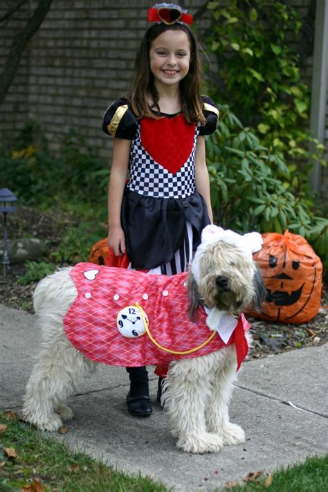 halloween themes with dogs family halloween costume theme ideas and more