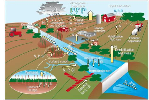 runoff diagram sustaining the earth s source of
