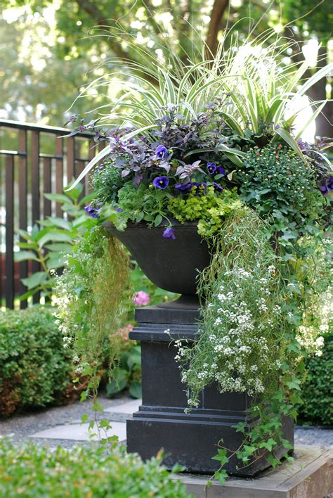 Fall Annuals Container Planter Front Yard Urn Landscape Planter Garden Ideas