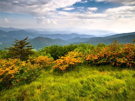 Adventureroad Com Giveaway - national parks in tennessee travel channel