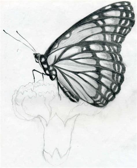 Pencil Drawing Sketch