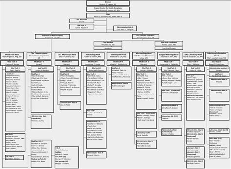hospital organizational structure philippine general