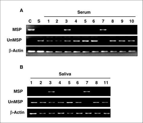 Serum Hpv characterization of the methylation patterns in human