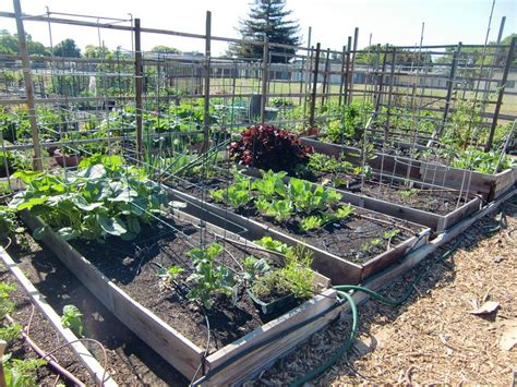17 Best Images About Gardens On Pinterest Gardens How Vegetable Garden Soil Composition