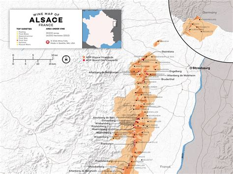 how to an alsatian understanding alsace wine w maps wine folly