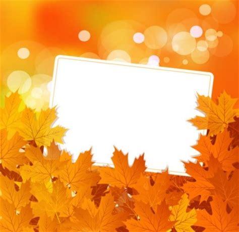 daun maple wallpaper daun maple yang indah latar belakang vektor vector latar