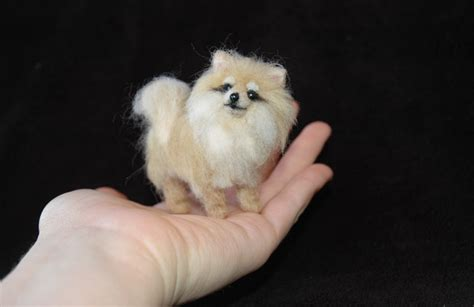 tiny pomeranians pin by rosie kanaeva on felting