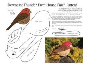 house finch pattern stuffed animal pattern how to make a