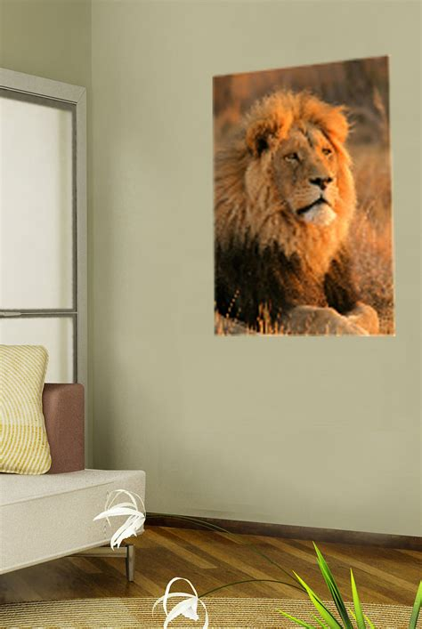 home interior lion picture canvas prints wall art of lion lion canvas art