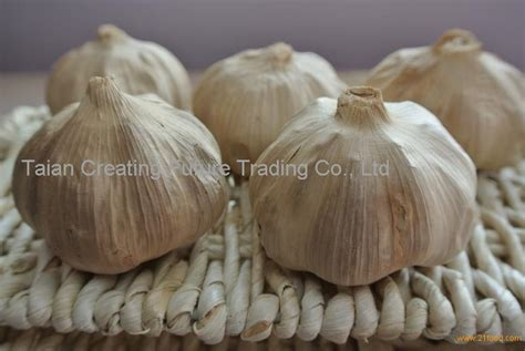 Herbal Black Garlic Bawang Hitam Original Supplier Herbal Indonesia black garlic bulb products china black garlic bulb supplier