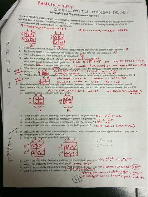 Genetics Worksheet Report Template Key Genetics Practice Problems Packet P 6 16 Mrs