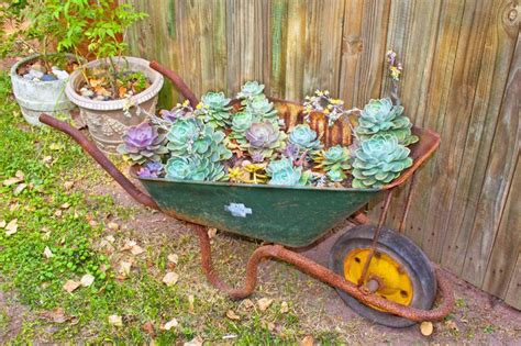 25 wheelbarrow planter ideas for your garden gardens