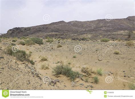 stone desert stone desert stock photography image 31308332