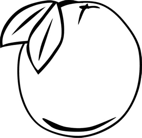Outline Picture by Orange Outline Food Fruit Orange Orange Outline Png Html