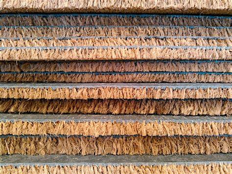 lo zerbino il zerbino o lo zerbino casamia idea di immagine