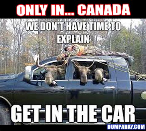 Canada Day Meme - funny canadian pictures google search i am canadian