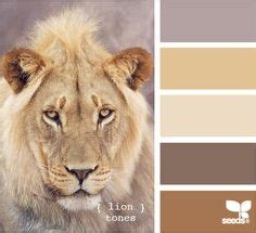 colour palette for inspired swimwear on design seeds color palettes and bonsai