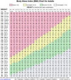 Pressure Measurement Bench Bmi Chart Printable Body Mass Index Chart Bmi Calculator