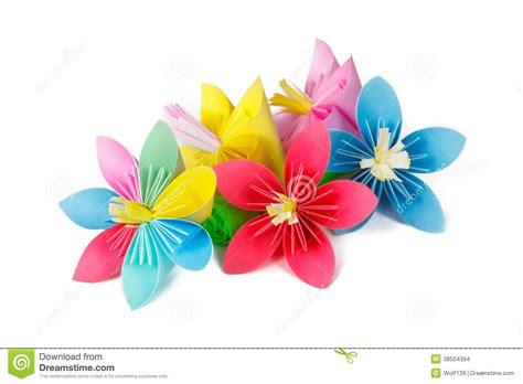 fiore con la z fiori di carta e fiore con i petali varicolored immagini