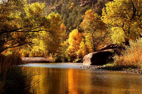 fall colors in arizona fall colors in arizona favorite swimming area turns
