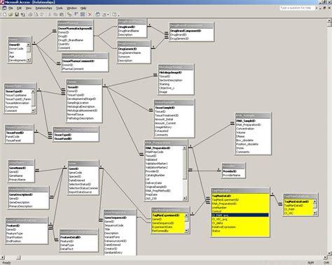 database relation diagram bioautomatix real time pcr
