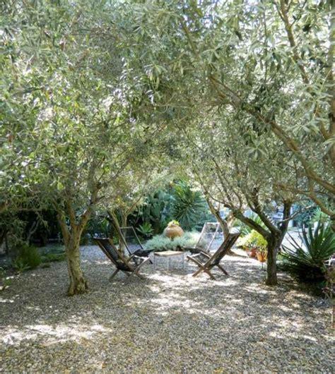 Idee Amenagement Jardin Sec by Les 25 Meilleures Id 233 Es De La Cat 233 Gorie Jardin