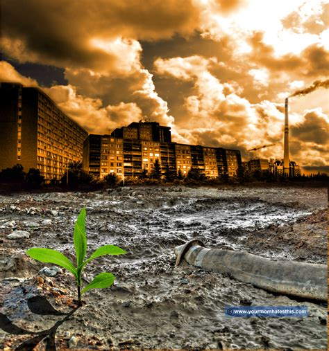 environmental challenges in africa environmental pollution a call for help in dying