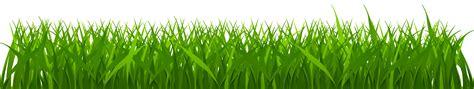 grass clipart cyprus grass clipart clipground