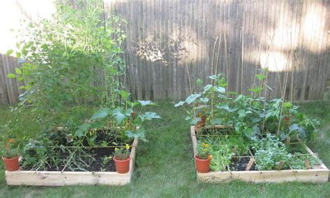 build  raised planter bed