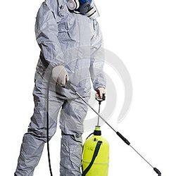 bed bug exterminator detroit detroit bed bug pest control specialist exterminateurs