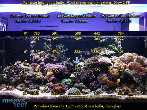 Lu Metal Halide Aquarium par measuring lighting intensity with a meter melev s reef