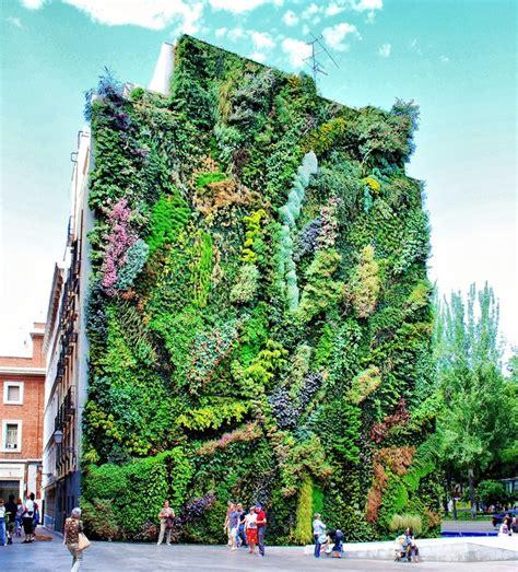 caracter 237 sticas y beneficios de los muros verdes