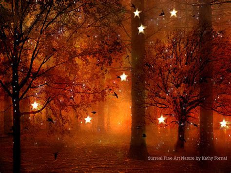 nature photography surreal haunting lights trees