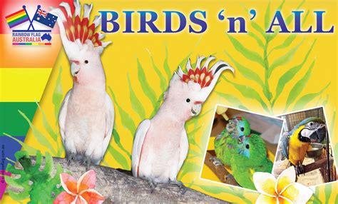 birds n all rainbow flag