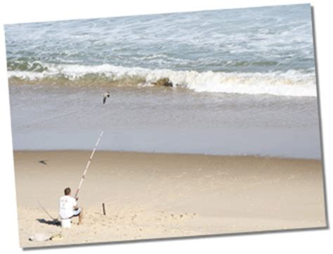 charter boat fishing rehoboth beach fishing and boating at the beach in delaware and maryland