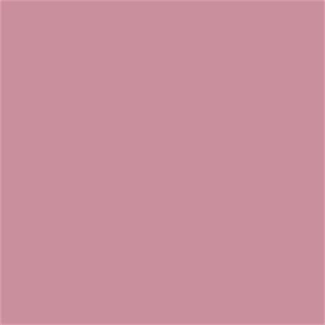 What Color Is Taupe by N Mauve Colour