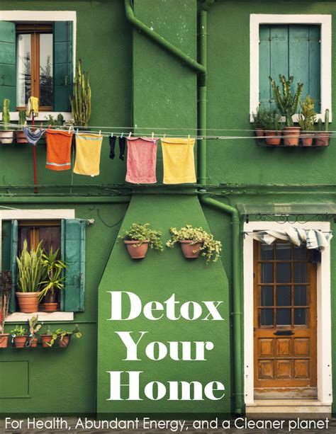 Detox Your House by Detox Your Home For Health Abundant Energy A Cleaner