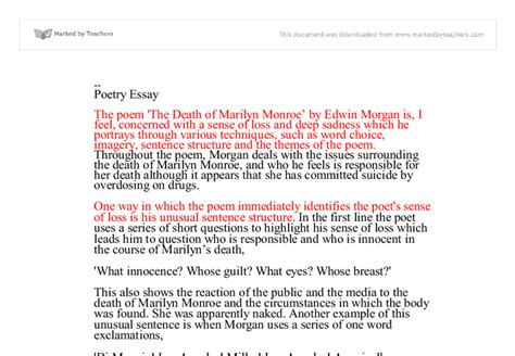 pro choice abortion thesis statement pro choice essay abortion essays pro choice abortion pro
