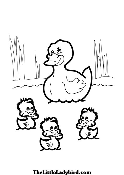 duck life coloring page duck colouring picture theme ducks pinterest