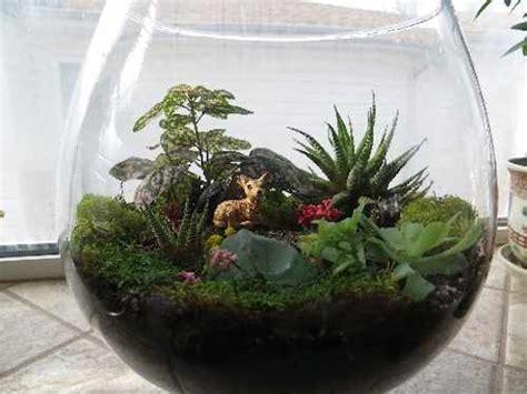 fun with flora fauna fungi food make a miniature world with terrariums