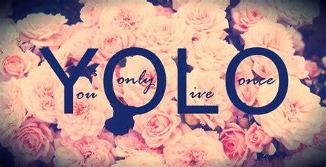love live themes tumblr yolo