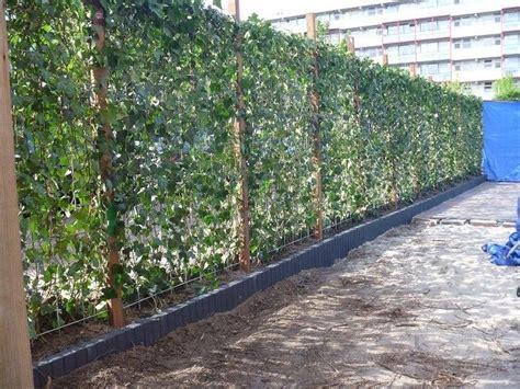 afscheiding tuinen maken 25 beste idee 235 n over tuin afscheiding op pinterest